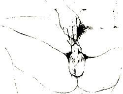 фрикции в сексе